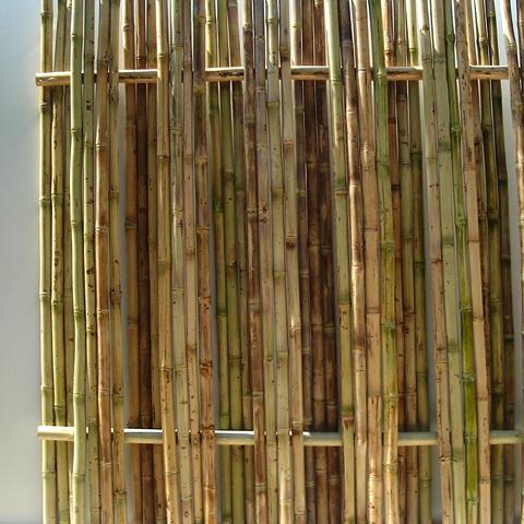 Bamboobiz Diseño En Bambú